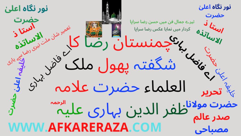 چمنستان رضا کا شگفتہ پھول ملک العلماء ظفر الدین بہاری
